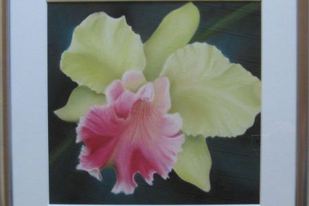 Thai - Orchidee 57 x 53  Fr. 560.00
