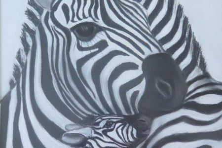 Zebrafamilie - 40 x 50  Fr. 200.00