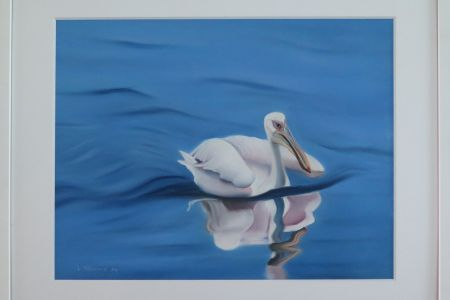 Pelikan in Walvis Bay  50 x 60  Fr. 570.00